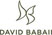 David Babaii Curling Irons